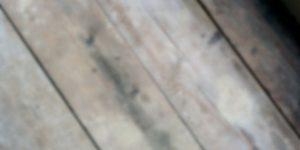 Best sander for scaffold boards